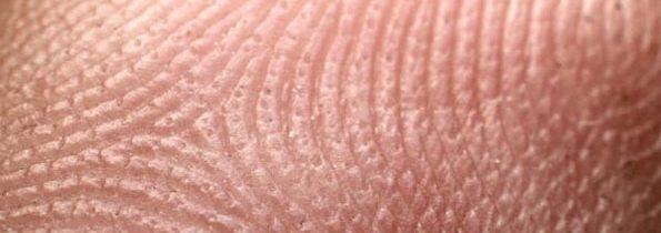 Creare sangue dalle staminali della pelle