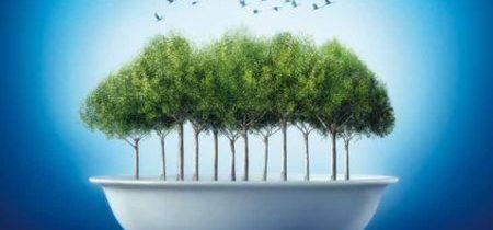 La dieta sana ed ecosostenibile del WWF