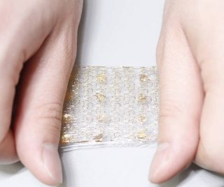 pelle silicio